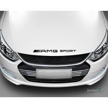 Lipdukas - AMG sport Nr. 2