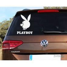 Lipdukas - Playboy pig