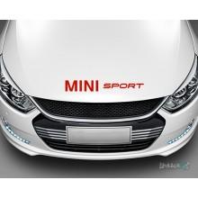 Lipdukas - Mini sport Nr. 2