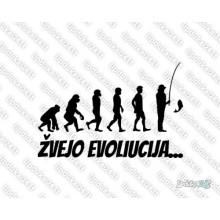 Lipdukas - Zvejo evoliucija
