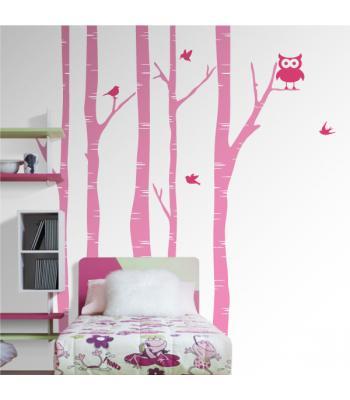Medžiai beržai su paukščiais