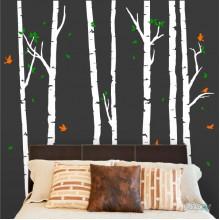 Lipdukas - Beržų miškas