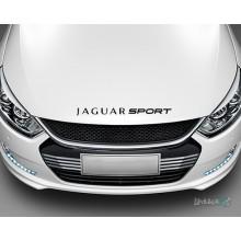 Lipdukas - Jaguar sport Nr. 2