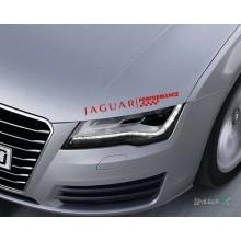 Lipdukas - Jaguar performance Nr. 2