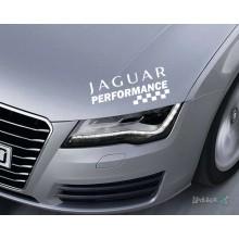 Lipdukas - Jaguar performance