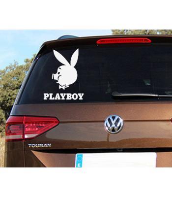 Playboy pig