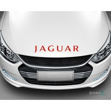 Lipdukas - Jaguar
