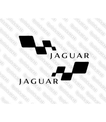 Jaguar racing 2 vnt.